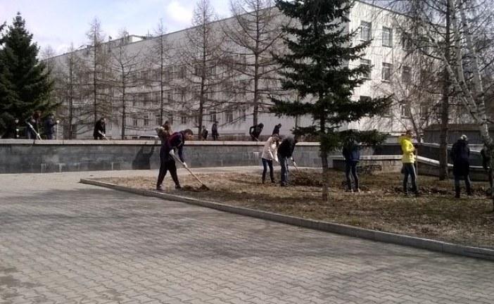Барнаульские студенты благоустраивают зеленые уголки